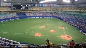 2016年野球観戦